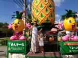 Pineapple World